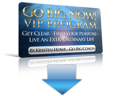 Go Big Now VIP Program coaching program